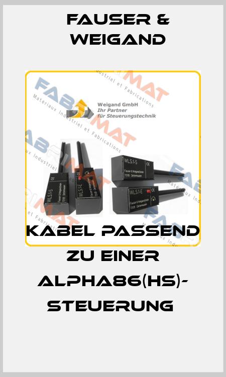 Fauser & Weigand-Kabel passend zu einer Alpha86(HS)- Steuerung  price