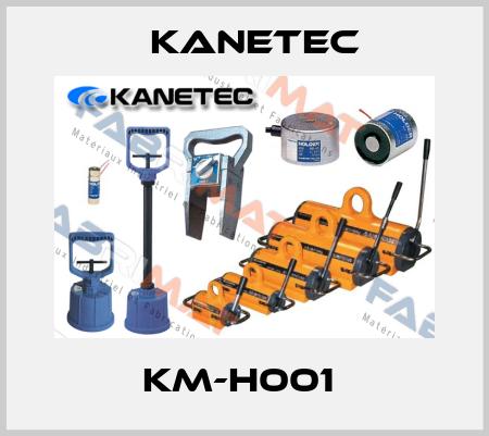Kanetec-KM-H001  price