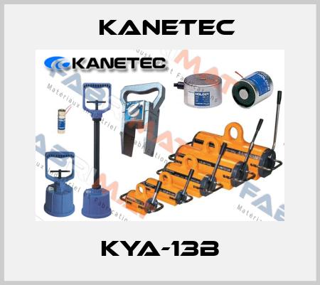 Kanetec-KYA-13 B  price