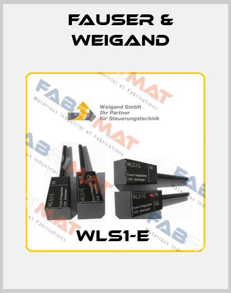 Fauser & Weigand-WLS1-E  price