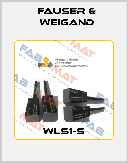 Fauser & Weigand-WLS1-S price